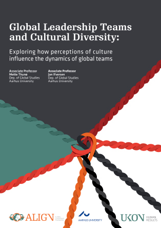 Forsidebillede til Global Leadership Teams and Cultural Diversity: Exploring how perceptions of culture influence the dynamics of global teams