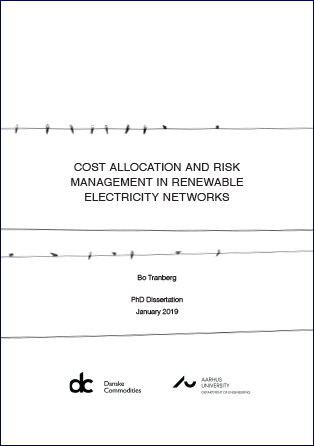 Cost allocation and risk management in renewable electricity networks