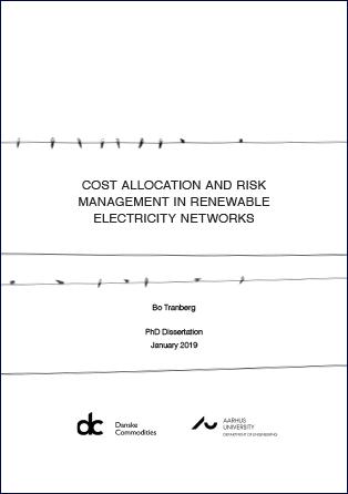 Forsidebillede til Cost allocation and risk management in renewable electricity networks